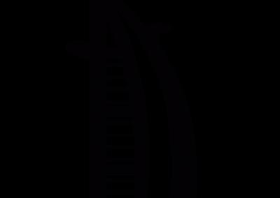 du-symbol